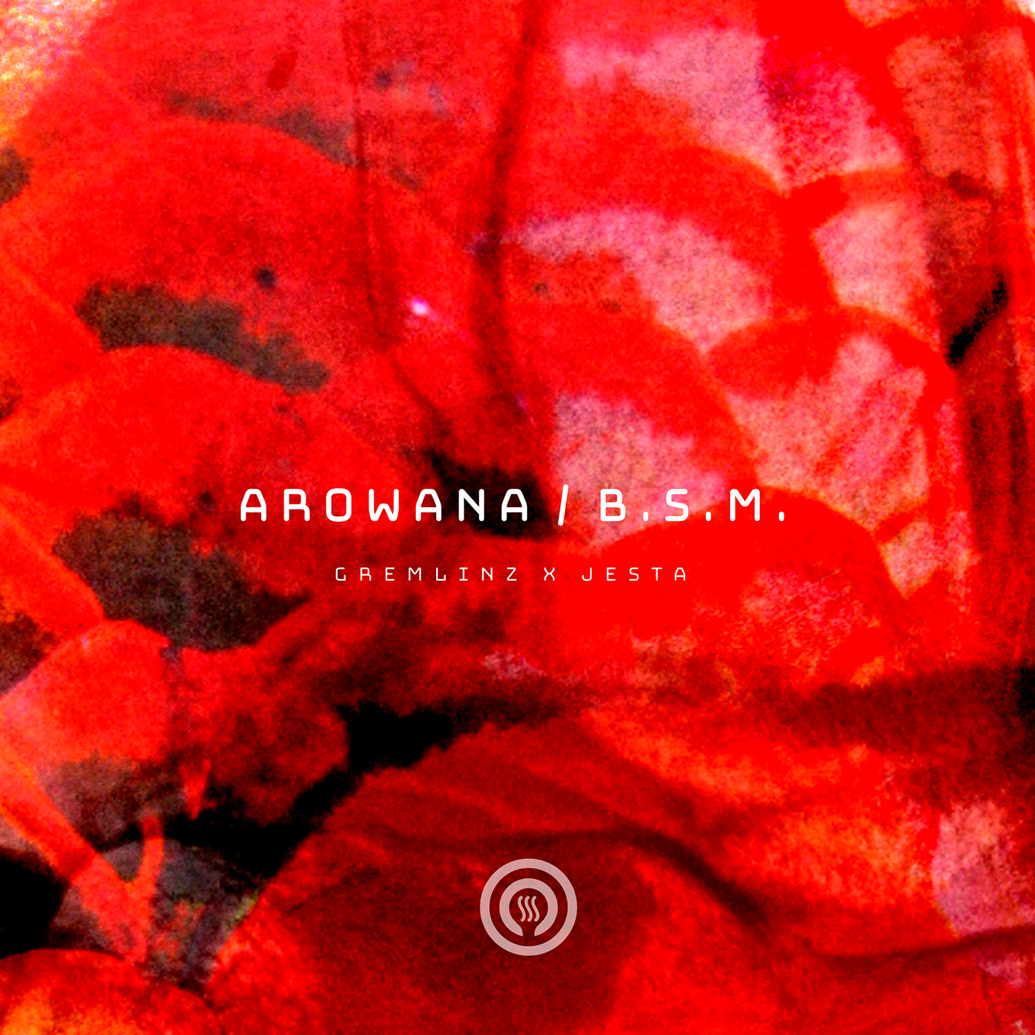 Arowana-Gremlinz-Jesta_drum-bass-album-cover-design