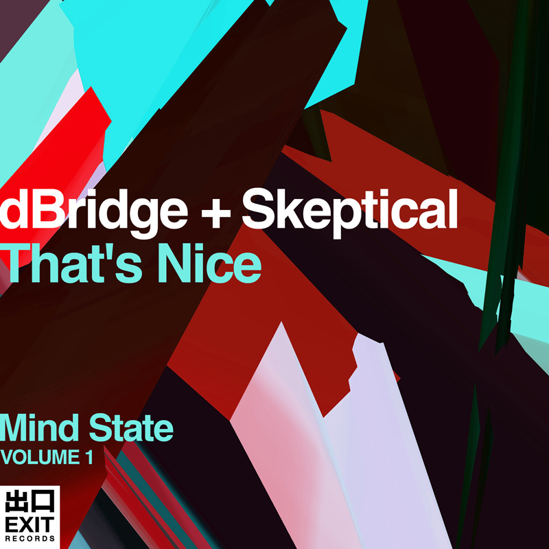 dbridge-skeptical-album-art-designer-toronto